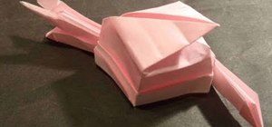 Make a 3D origami snail for intermediate origami students