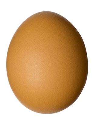 """""""Go Lay An Egg"""""""