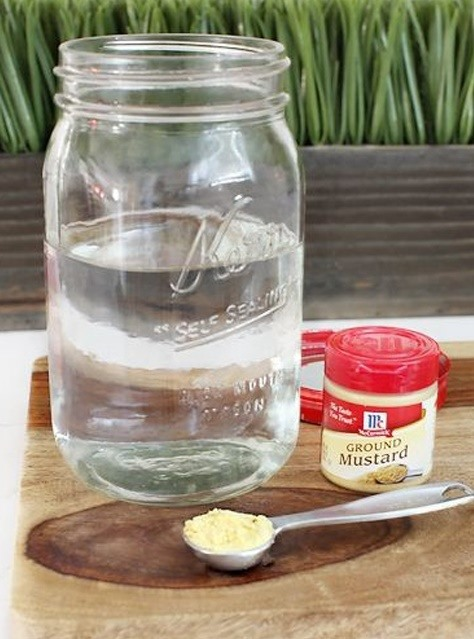 How to De-Stink Old Smelly Jars with Two Simple Ingredients