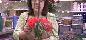 Make a eurpoean hand tied bouquet