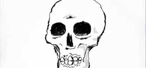 Draw a skeleton skull
