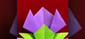 Origami a tulip flower