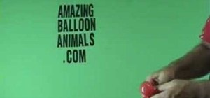 Make a lady bug balloon animal