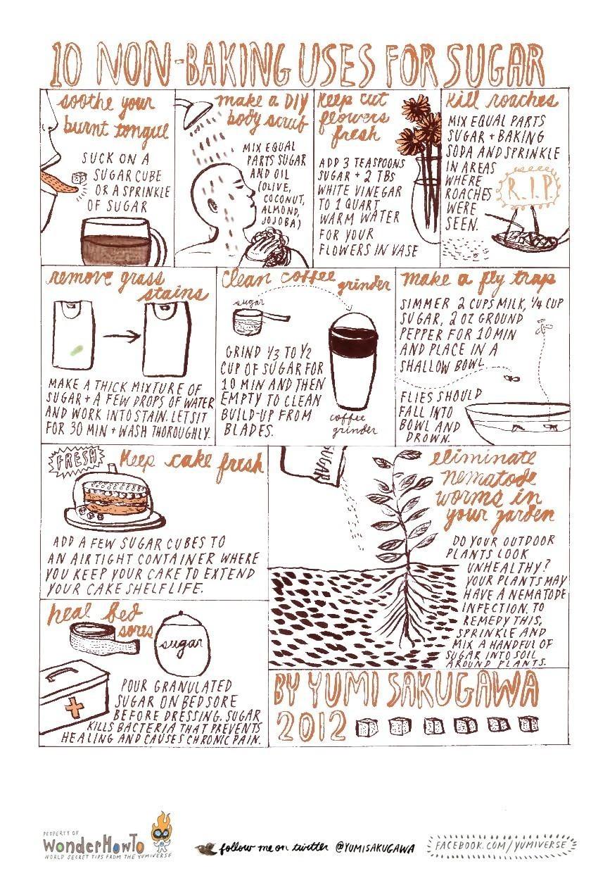10 Non-Baking Uses for Sugar