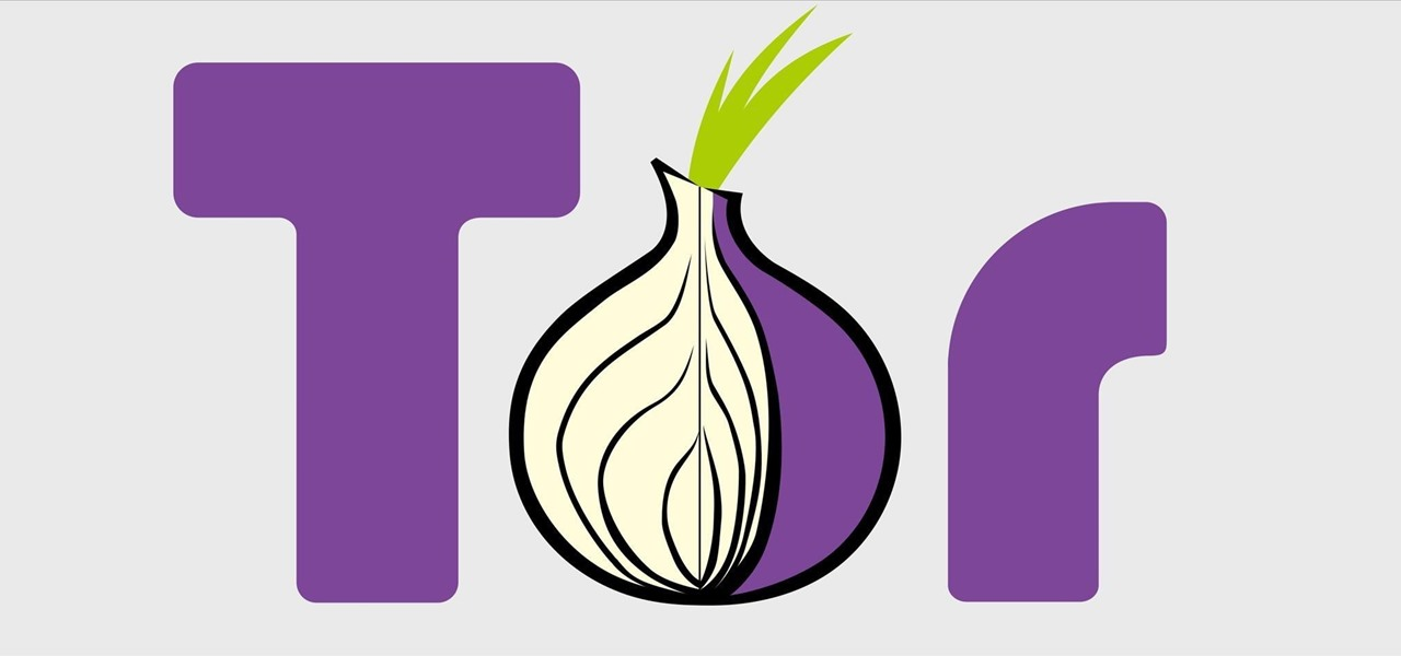 Use Traffic Analysis to Defeat TOR