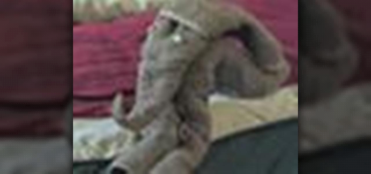 How To Fold A Towel Into An Elephant Shape Housekeeping Wonderhowto