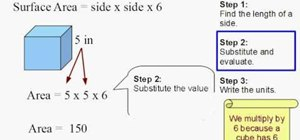 Find the surface area of a cube