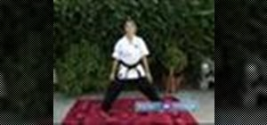 Do beginning Koden Kan karate moves