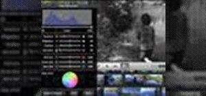 Use advanced color techniques in iMovie '08