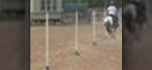 Train a horse for equestrian speed events