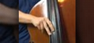 Play melodic basslines on the upright bass