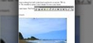 Insert and edit pictures in Word