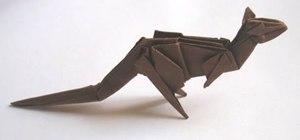 Origami a Weiss kangaroo
