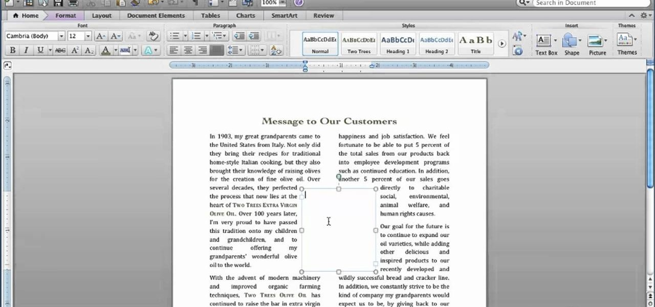 How To Insert And Format A Text Box In Microsoft Word For Mac 2011 Office WonderHowTo