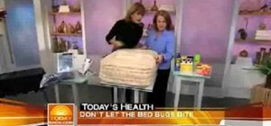 Protect yourself & your mattress from bed bugs