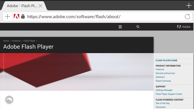 do i have adobe flash player
