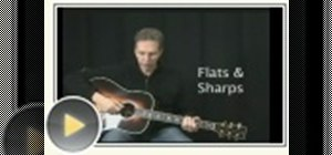 Play flats and sharps on guitar