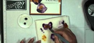 Make a friendship card with butterflies and pansies