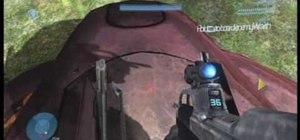 Drive an anti-aircraft wraith on Halo 3