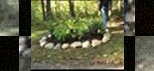 Build a rock garden