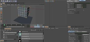 Use Soft Body Tags in MAXON Cinema 4D R12