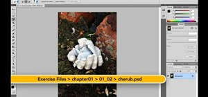 Use Photoshop CS5's content-aware fill tool to remove an element from an image