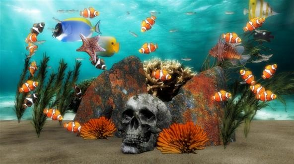 Zone Out to Dreamy Digital Aquariums on PC and Xbox 360