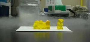 Freeze a gummi bear in liquid nitrogen and shatter it
