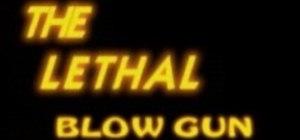 Make a blowgun and blowdart for under five bucks
