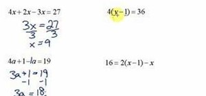 Simplify & solve multi-step equations in algebra
