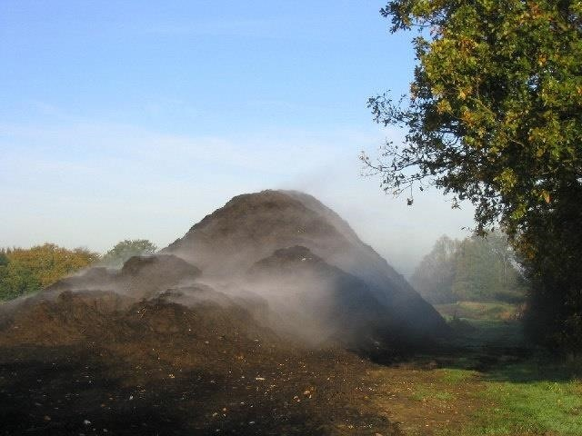 Soil Science: How Microbes Make Compost to Feed the Soil