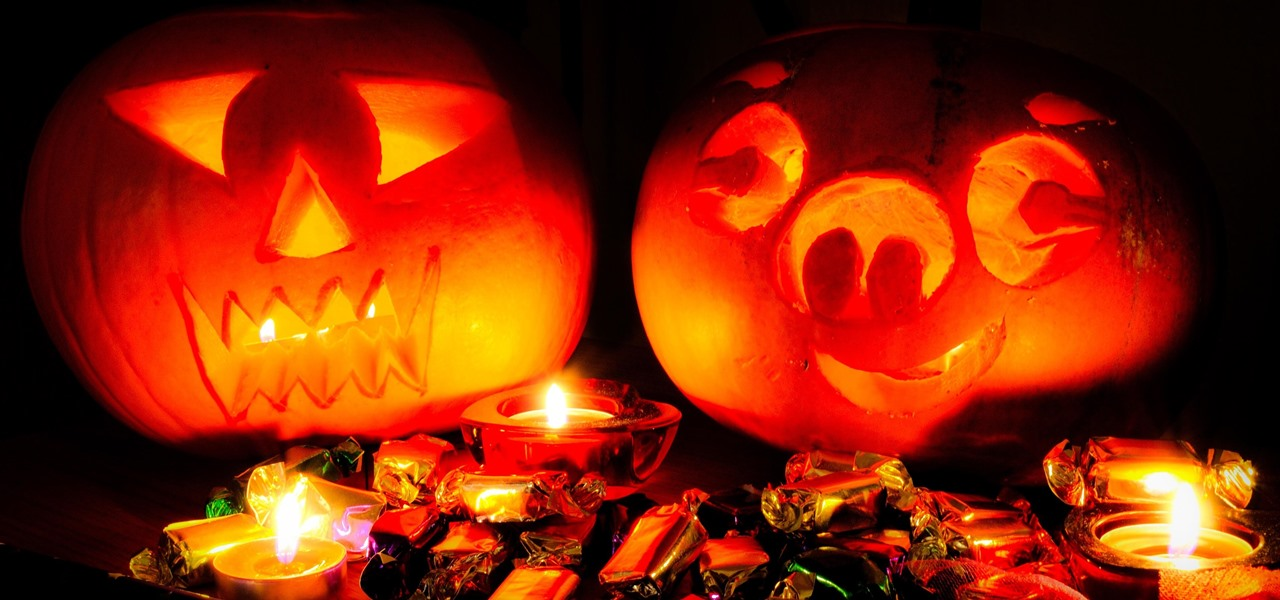 Prevent Carved & Uncarved Pumpkins from Rotting