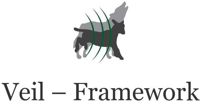 Veil-Framework Installation Error