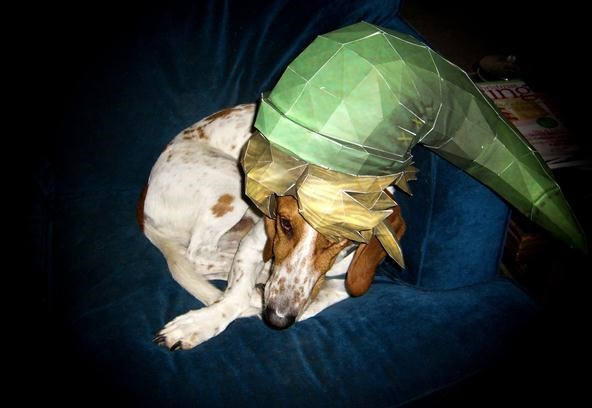 Pet Portrait Challenge: Link Hat