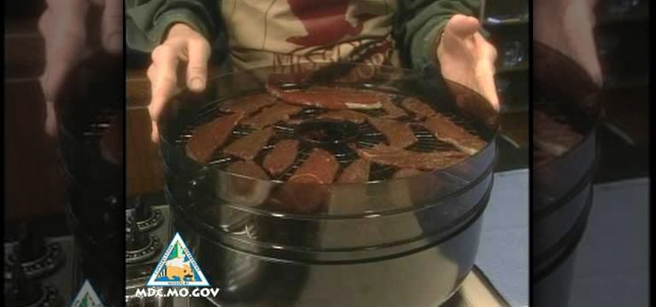 How To Make Venison Jerky In A Dehydrator 171 Meat Recipes
