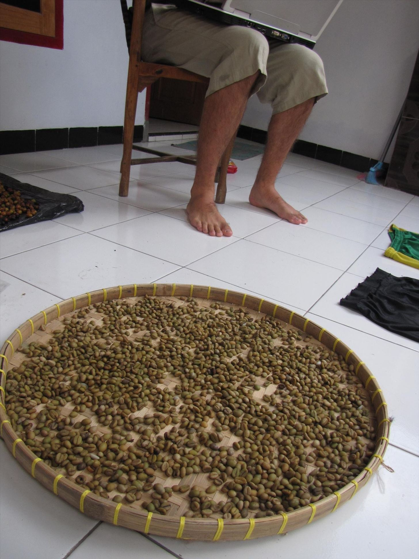 How I Made Cat Poop Coffee (Kopi Luwak)—The Best Cup of Crap Ever