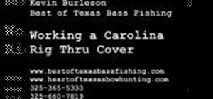 Work a Carolina rig through tough cover