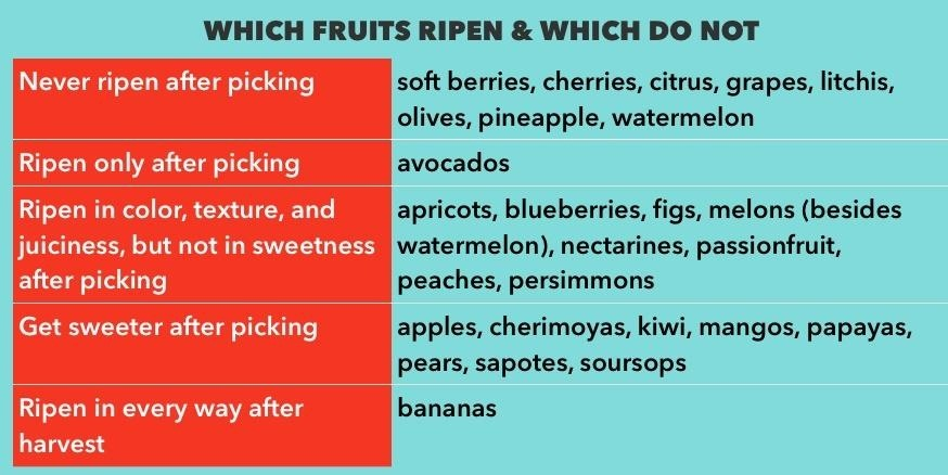 nature s secret code how to pick perfectly ripe fruit every time   fruits fall into which categories the chart below based on jeffrey steingarten s delightful essay ripeness is all which you can in his