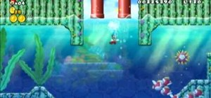 Collect all three Star Coins in New Super Mario Bros Wii World 1-4