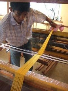 1,000,000 Spiders Weave Rare Silk