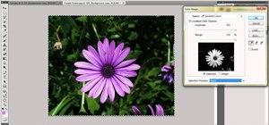Isolate one color with Adobe Photoshop
