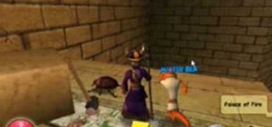 Find the Krokotopia Beetle locations in Wizard101