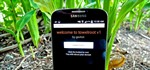 How to Root Any Samsung Galaxy S4 in One Click