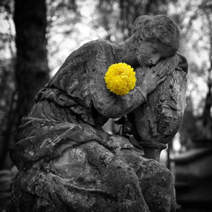 Get Inspired! 20 Examples of Selective Color Photography