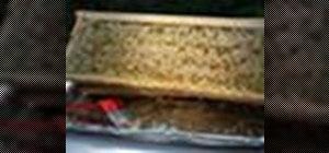 Extract honeybee honey from backyard harvesting beehives