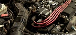 Replace a distributor in an Acura Integra