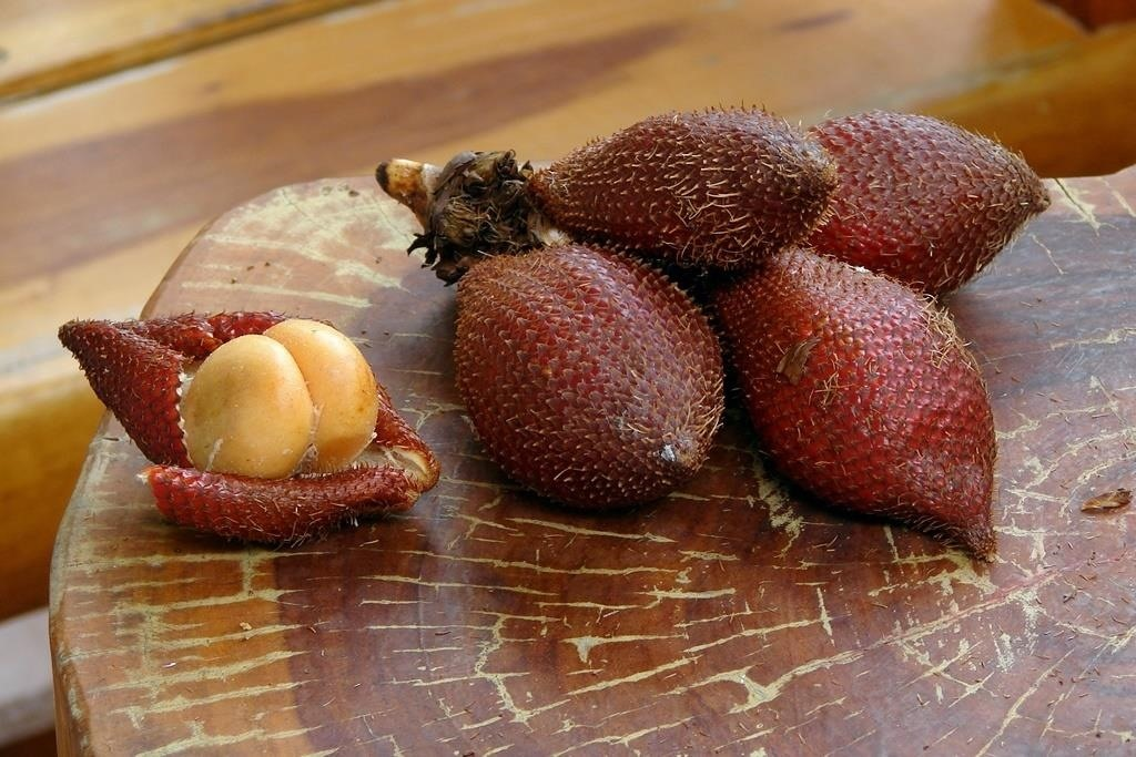 Weird Ingredient Wednesday: Salak (A Fruit Slytherins Would Love)