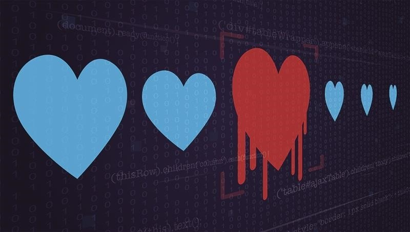Hack Like a Pro: Hacking the Heartbleed Vulnerability