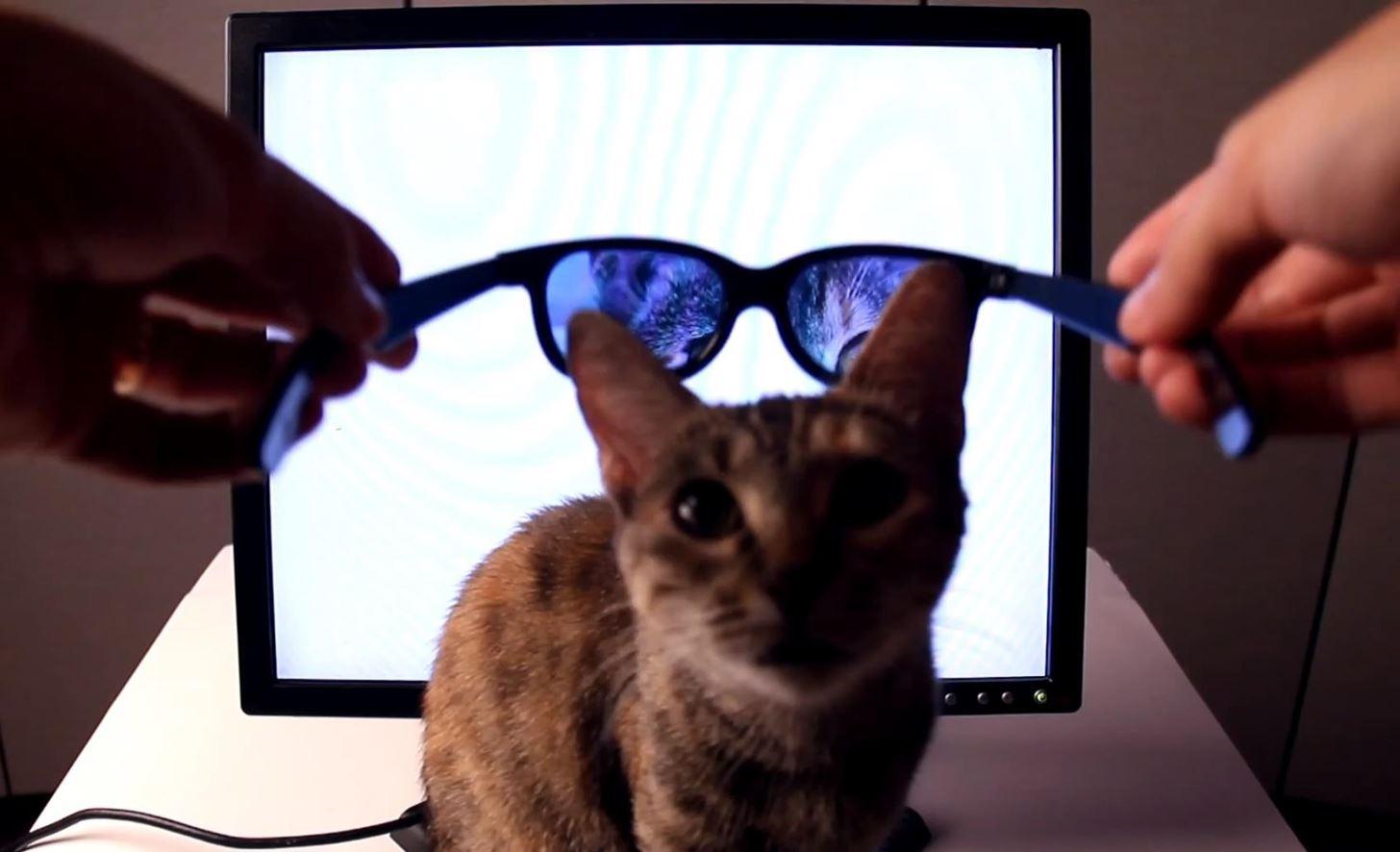 Lcd Monitor Polarized Glasses Louisiana Bucket Brigade Polarizer 17 Inch Screen Slevi1mitedu